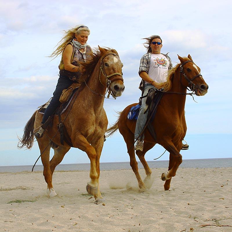 Willkommen auf dem Pferdehof Morgenstern