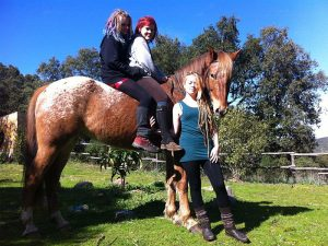 Für Anfänger und kleine Kinder stehen Ponys und ruhige Pferde zur Verfügung