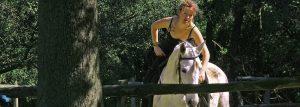 Work und Travel auf dem Pferdehof Morgenstern